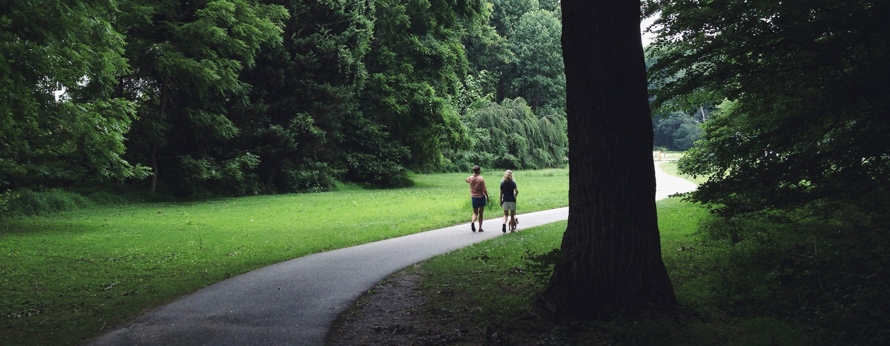 A couple walking down a path surrounded by lush green trees.